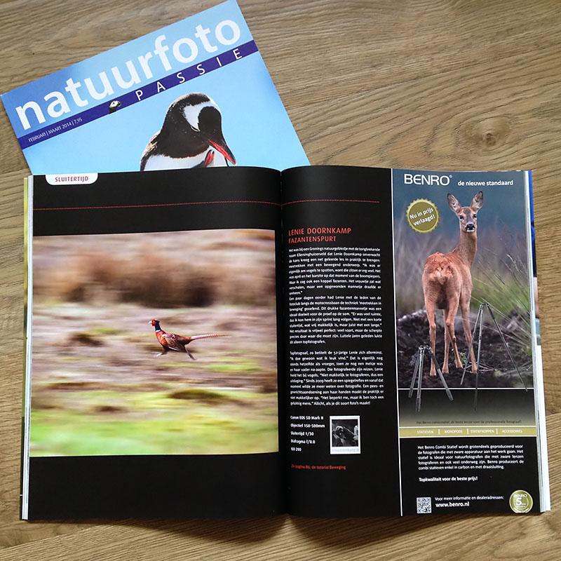 20140211-natuurfotopassie