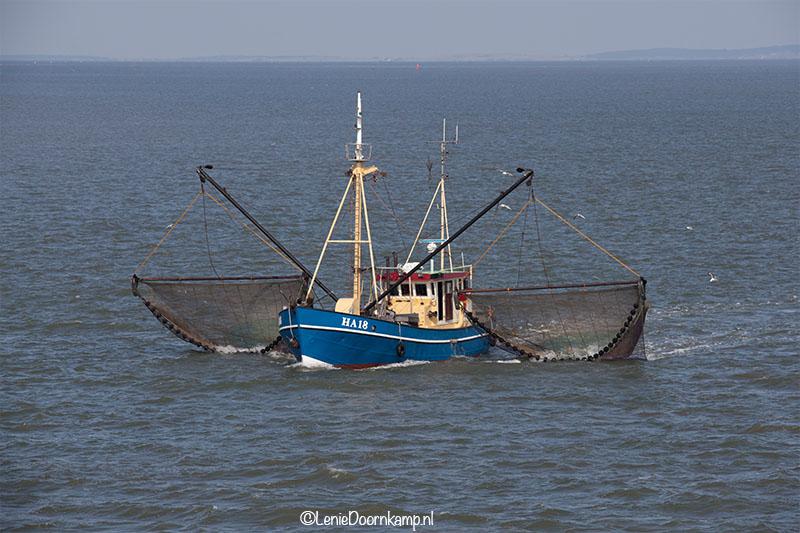 20140505_vissersboot