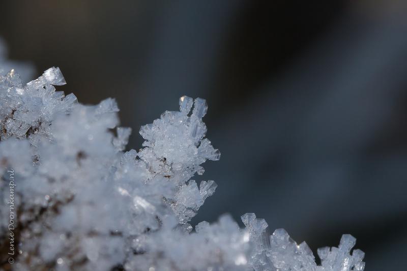 20161205-kristallen-2