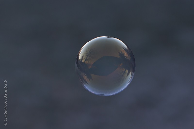 20161205-zeepbel-2