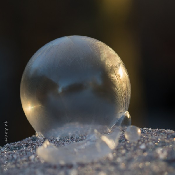20161205-zeepbel