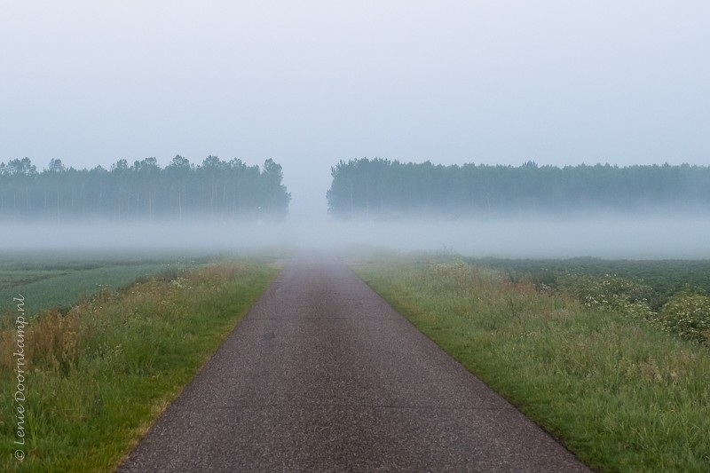 20170529-mist